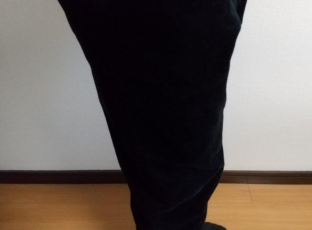 スマートアンクルパンツ 横側 履いた状態